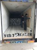 Facciate e rivestimento di alluminio perforati personalizzati esterni del comitato di parete di Metalcurtain