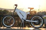 100 км/ч стиль Ebike мотоциклов с электроприводом для продаж