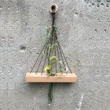 ガラス管との自然なブナの森のHangngの花構成