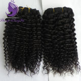 Brazilian Vingin humanly Hair Kinky Curly Hair Weaving