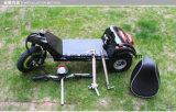3つの車輪が付いている500W電気手段