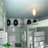 Congeladora, cámara fría, refrigerador de aire, el panel de emparedado de la PU