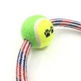 Haustier-Hundeseil-Spielzeug mit Tennis-Kugel für das Zahn-Säubern