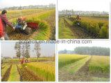 Precio de fábrica de cosechadora de soja arroz Mini Engranaje Reaper
