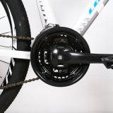 درّاجة [توورني] [24-سبيد] [ألومينوم لّوي] جبل درّاجة