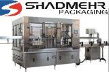 10000bph 500ml Flaschen-Wasser-Plombe/Kennzeichnung/Verpackungsmaschine