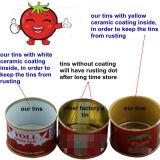 Goma de tomate conservada 28-30% Brix