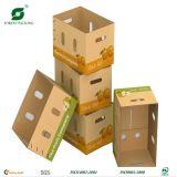 Contenitori di frutta della scatola di trasporto del documento ondulato