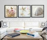 Cuadros del shell del mar de la playa para la decoración de la pared