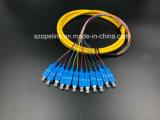 광학 섬유 케이블 섬유 연결관 12 코어 뭉치 떠꺼머리 Sc/Upc G652D