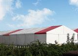 Exposition d'auvent chapiteau géant tente au prix d'usine