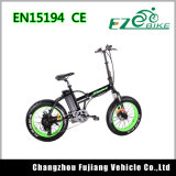 전기 자전거를 접히는 20inch 눈 자전거 뚱뚱한 타이어