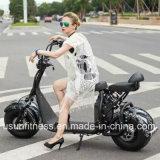 E-Bici elettrica poco costosa dei Cochi della città del motorino con Ce