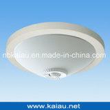 Energiesparende PIR Fühler-Deckenleuchte (KA-C-302F)
