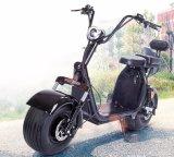 リチウム電池が付いている1500W電気Eのスクーター