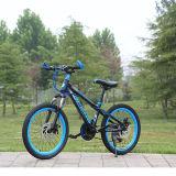 Bici azul de los niños de la manera de la fábrica para la venta al por mayor en línea