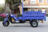 貨物乗客ガソリン3車輪のオートバイの三輪車
