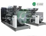 Grupo electrógeno diesel / Conjunto de generación con motores Perkins Enging 165kVA (LPM132)