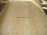 madera contrachapada de 3m m/madera contrachapada de Okoume/madera contrachapada del pino/madera contrachapada de Bintangor