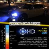 Comprar o carro ESCONDIDO xénon do jogo 55W o auto bulbo H1 H3 H7 H8 H9 H11 9005 do farol 9006 4300K 5000K 6000K 8000K 10000K 12000K