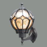 Nachfüllbare im Freienlampe (TS-OD-091)