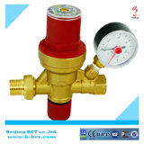 위조된 바디 자연적인 금관 악기 색깔 자동적인 압력을 가하는 안전 밸브 안전 밸브 BCTSV03 1.5-8Bar