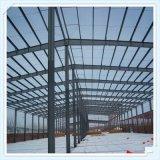 Costruzione della struttura d'acciaio dell'ampia luce per la fabbrica
