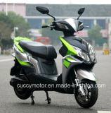 電気品質の中国2017 1000With1500W LEDのスクーター(CCE-16)