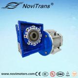 мотор постоянного магнита AC 0.75kw с Decelerator (YFM-80A/D)