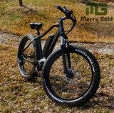 Bicicleta elétrica elétrica de 250W 36V com MID Drive para adultos