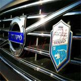 Distintivo personalizzato dell'automobile di immagine dell'aquila di disegno 3D