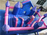 Campo da giuoco gonfiabile di mini formato, principessa gonfiabile Castle Rental