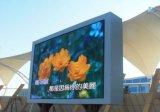 Luminosità esterna del TUFFO P16 alta che fa pubblicità al video schermo di visualizzazione del LED