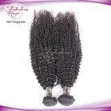 머리 Dyeable 좋은 비꼬인 브라질 Virgin 사람의 모발