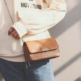 2017人の卸し売り新しい方法女性のハンド・バッグ(22450)