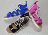 Señora plana Sandals de las mujeres del último diseño única
