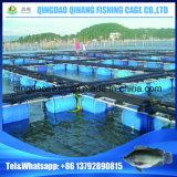 耐用年数ポンツーン15年の水産養殖装置の浮遊