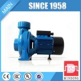 Bomba de agua centrífuga del flujo DK de la serie estándar del IEC alta