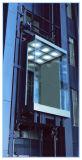 L'ascenseur panoramique et de visites de levage avec faible bruit de verre