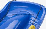 大人のためのボードを滑らせるセリウムの証明書の砂の草の雪