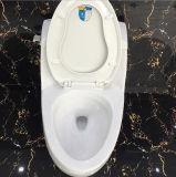 Keramische Porzellan-gesundheitliche Ware-einteilige WC-Toilette