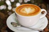 De Roomkan van de koffie - niet ZuivelRoomkan voor Koffie
