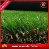 Césped natural de la hierba del balompié para el campo de fútbol