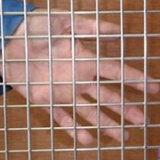 El acero soldó el acoplamiento de alambre en China para el uso de la construcción