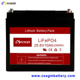 Lange Lebensdauer-Lithium-Eisen-Phosphatbatterie (LiFePO4) 12V100ah