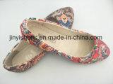 Сбывания нового пальца ноги цвета ткани повелительницы Ботинка Внутренн Двери Плоск Multi остроконечного горячие
