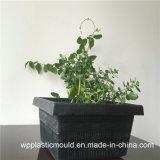庭の装飾(HP-03)のための正方形のプラスチック植木鉢