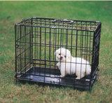Клетка, клетка собаки, клетка Rabit кота, клетка попыгая, пер тренировки