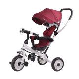 O passeio no portador de bebê brinca o triciclo de criança barato com barra do impulso
