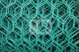 PVC緑の高品質の六角形の鶏のネット